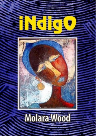 Indigo-book-cover